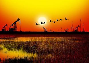 自然资源综合开发